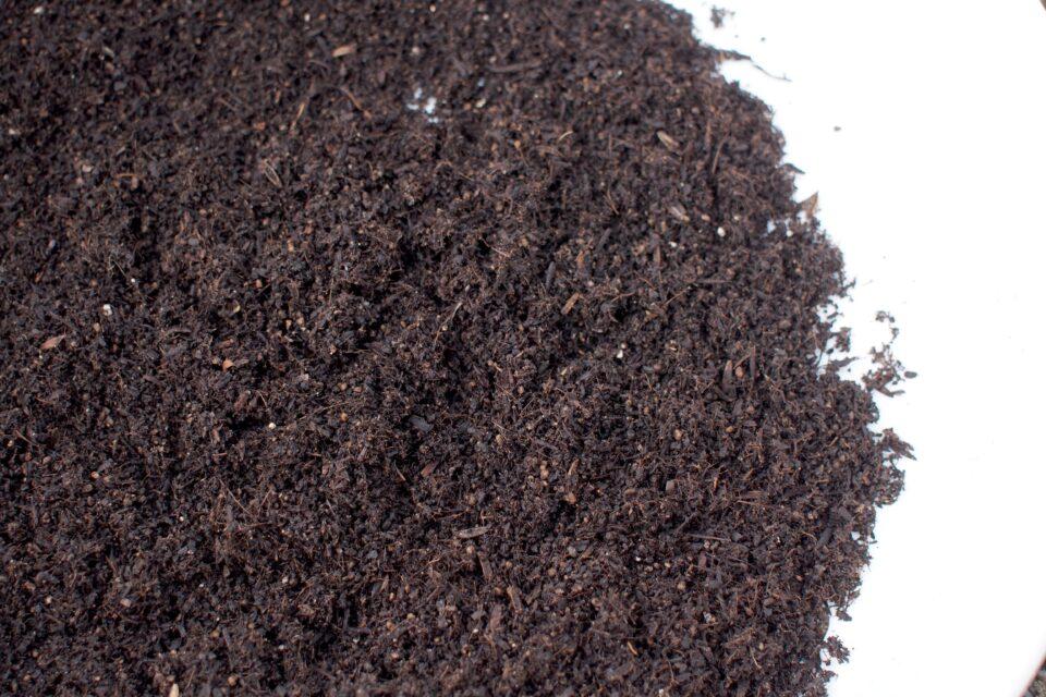 ふるいにかけた培養土