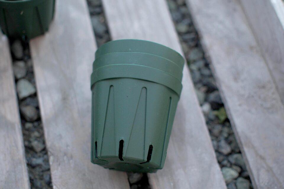 スリット鉢 プラ鉢 6cm モスグリーン