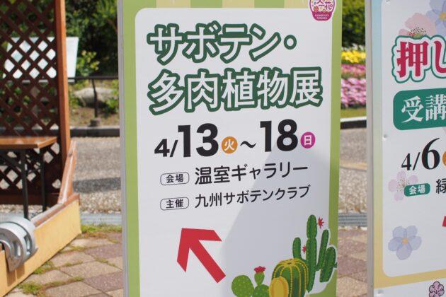福岡市植物園でのイベント